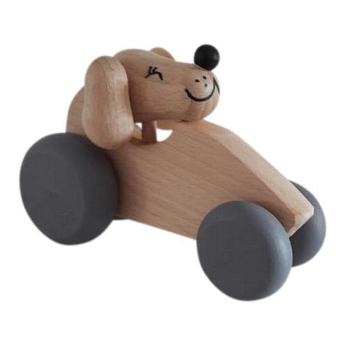 Auto met hond